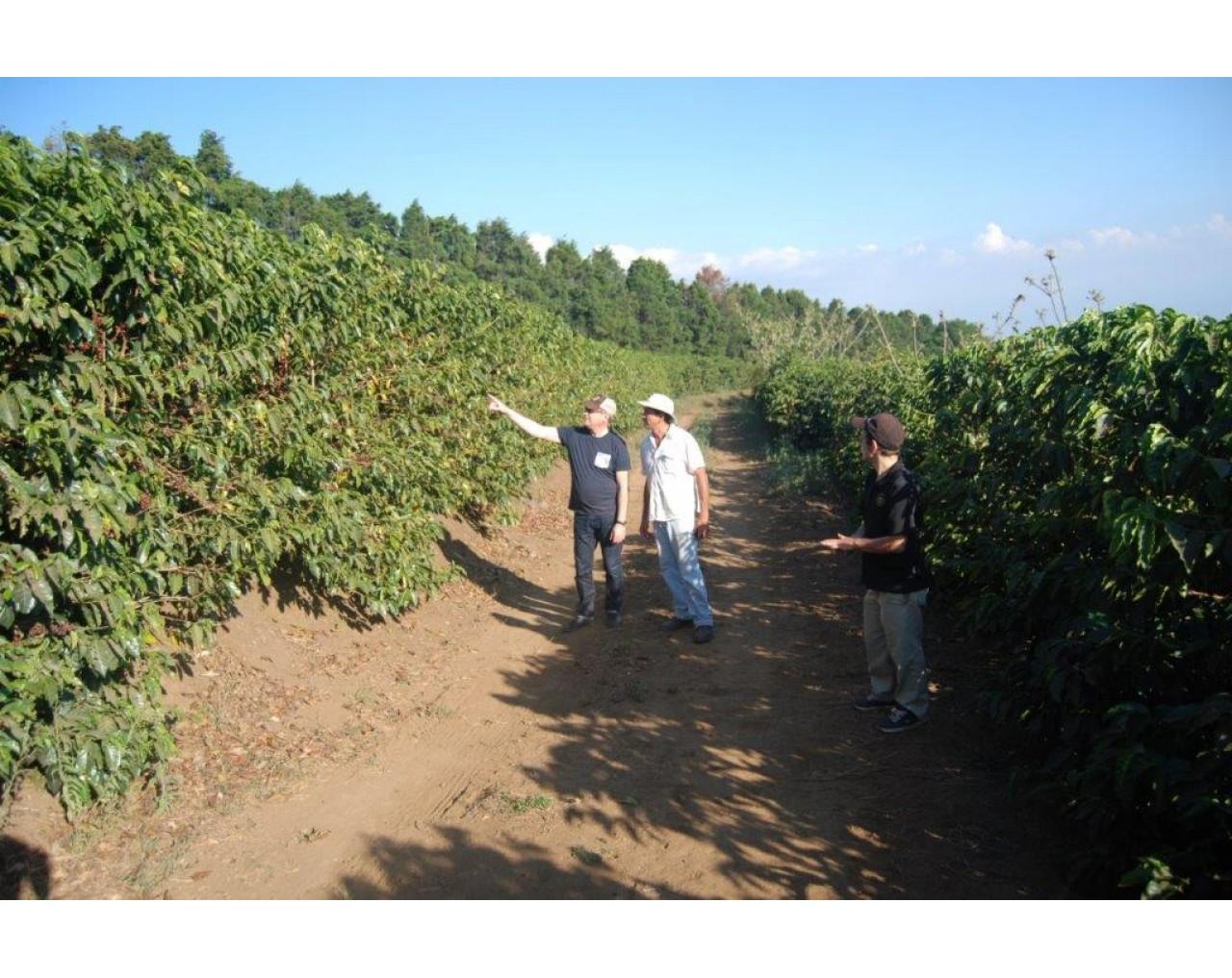 La Planada, Herbazu Micromill - Costa Rica
