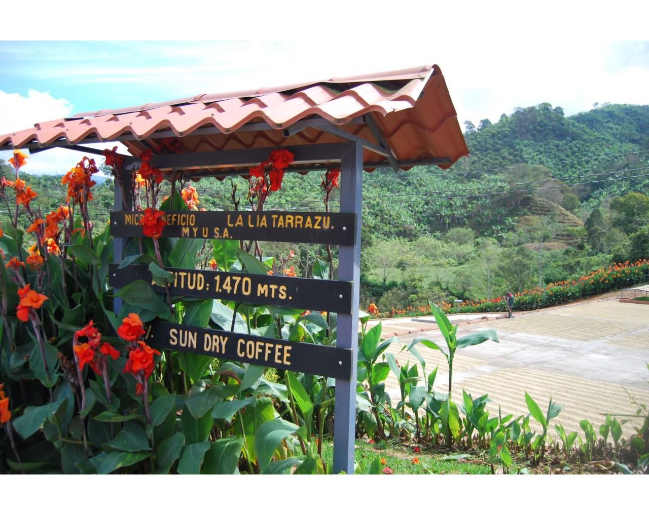 La Lia micromill - Costa Rica