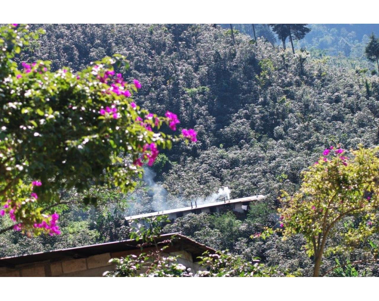 Michicoy FVH – Guatemala
