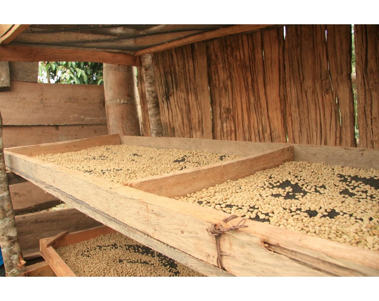 Organic Arabica - Peru